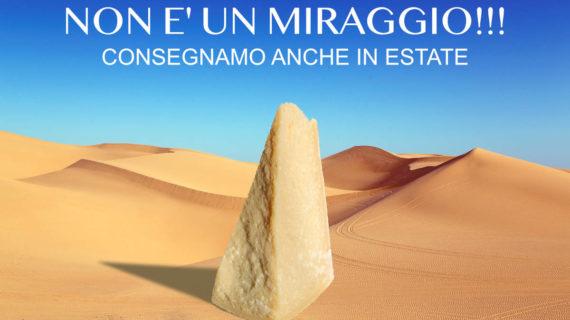 Parmigiano Reggiano – Spedizioni anche in Estate.