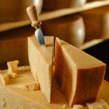 Parmigiano Reggiano con spicchi e scaglie